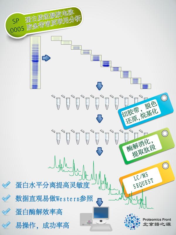 pf_web_proteomics_GeLCMS_01-01